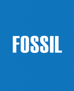 Buy a Discount Fossil Gift Card Online
